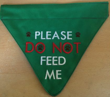 Do Not Feed Me 1 Finished Bandana - Threaded Scribbles